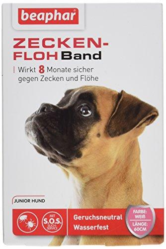Zecken-Flohband Junior für Hunde   8 Monate gegen Zecken & Flöhe   Mit SOS-Suchservice   Für Hundewelpen ab 12 Wochen   Farbe: Weiß   Länge: 60cm