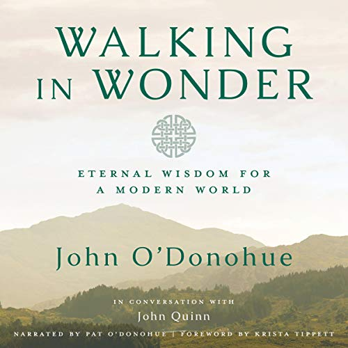 Walking in Wonder audiobook cover art