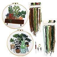 DOITEM 刺繍スターターキット パターン付き 刺繍布 刺繍 パターン 刺繍 フープ カラースレッド ツールキット