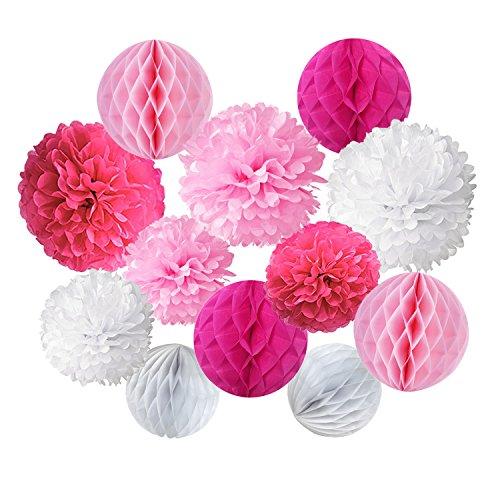 ZERODECO 12 Stück Papier Pompoms und Wabenbälle Dekorpapier Kit für Geburtstag Hochzeit Baby Dusche Parteien Hauptdekorationen - Rosa, Pink und Weiß