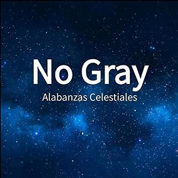 No Gray