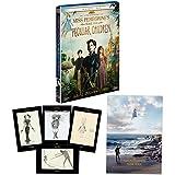 【Amazon.co.jp限定】ミス・ペレグリンと奇妙なこどもたち 2枚組ブルーレイ&DVD (A3サイズポスター+ポストカードセット付き)(初回生産限定) [Blu-ray] image