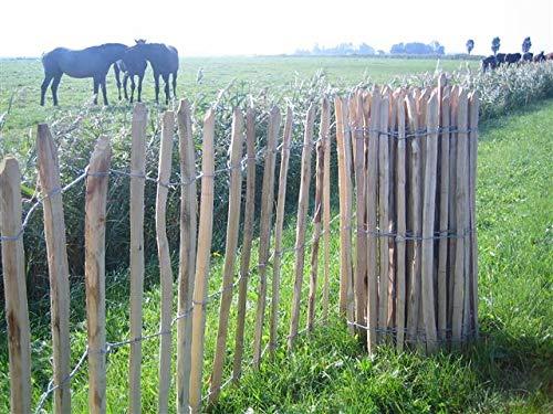 Pflanzenfuchs® Staketenzaun aus Haselnussholz - Handw. Qualitätsarbeit - Lattenabstand 8cm - Verschiedene Größen (50x460cm)