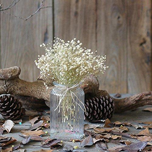 HUHU833 Natürliche getrocknete Blume Himmel Sterne floral Blumenstrauß Blume für Dekoration Wohnaccessoires & Deko (Weiß)