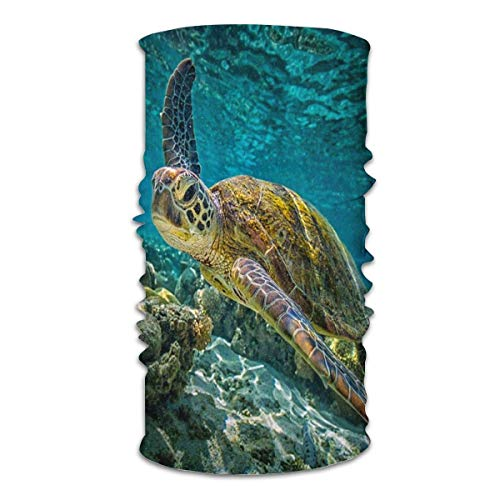Annays Headwear Hawksbill EA Turtle Sports Coupe-Vent Magic Carf Multi Functional Face Bandanas Neck Gaiter 25X50Cm Balaclava Headscarf Unisex Outdoor