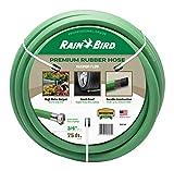 Rain Bird PGH75HF Premium High-Flow Garden Hose, Heavy-Duty 100% EDPM Rubber, Hexagonal, Kink-Resistant, 3/4' Inside Diameter x 75' Long, Green