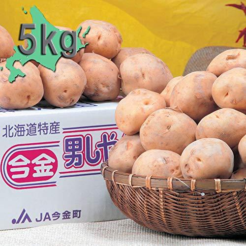 【お取り寄せグルメ】今金産 男爵いも(5kg) 0000-034134 北海道産直品 じゃが芋 じゃがいも ジャガイモ
