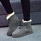 KoelrMsd 1 par de Botas de Nieve de Invierno, Botas Cortas de Moda para Mujer, Zapatos de algodón con Cordones, Zapatos cálidos y de Terciopelo para Estudiantes