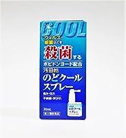 【第3類医薬品】浅田飴のどクールスプレー 30mL ×2