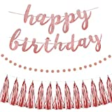Pink Happy Birthday Party Decorations - Pink Glittery Happy Birthday Banner Circle Dot Garland & Rose Gold Tassels Set for Birthday Party Decoration