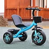 Triciclo Evolutivo Toral Triciclo para niños con pedal, 2 en 1 Altura multifunción Ajustable Bicicleta de entrenamiento al aire libre, para niños de 2 a 5 años de edad, niñas, regalo de cumpleaños, bi