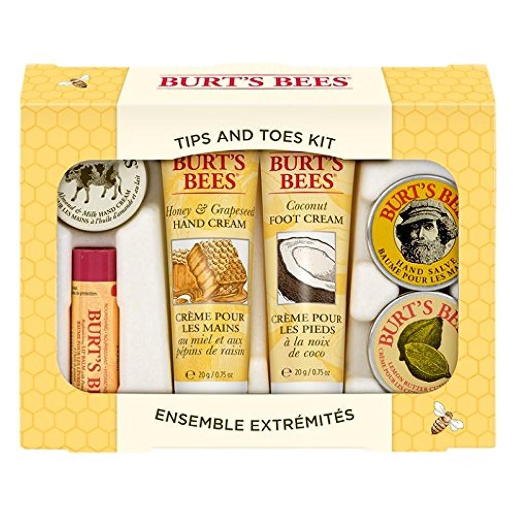 スペクトラム無能悔い改めバーツビーのヒントとつま先はスターターキットをスキンケア (Burt's Bees) - Burt's Bees Tips And Toes Skincare Starter Kit [並行輸入品]