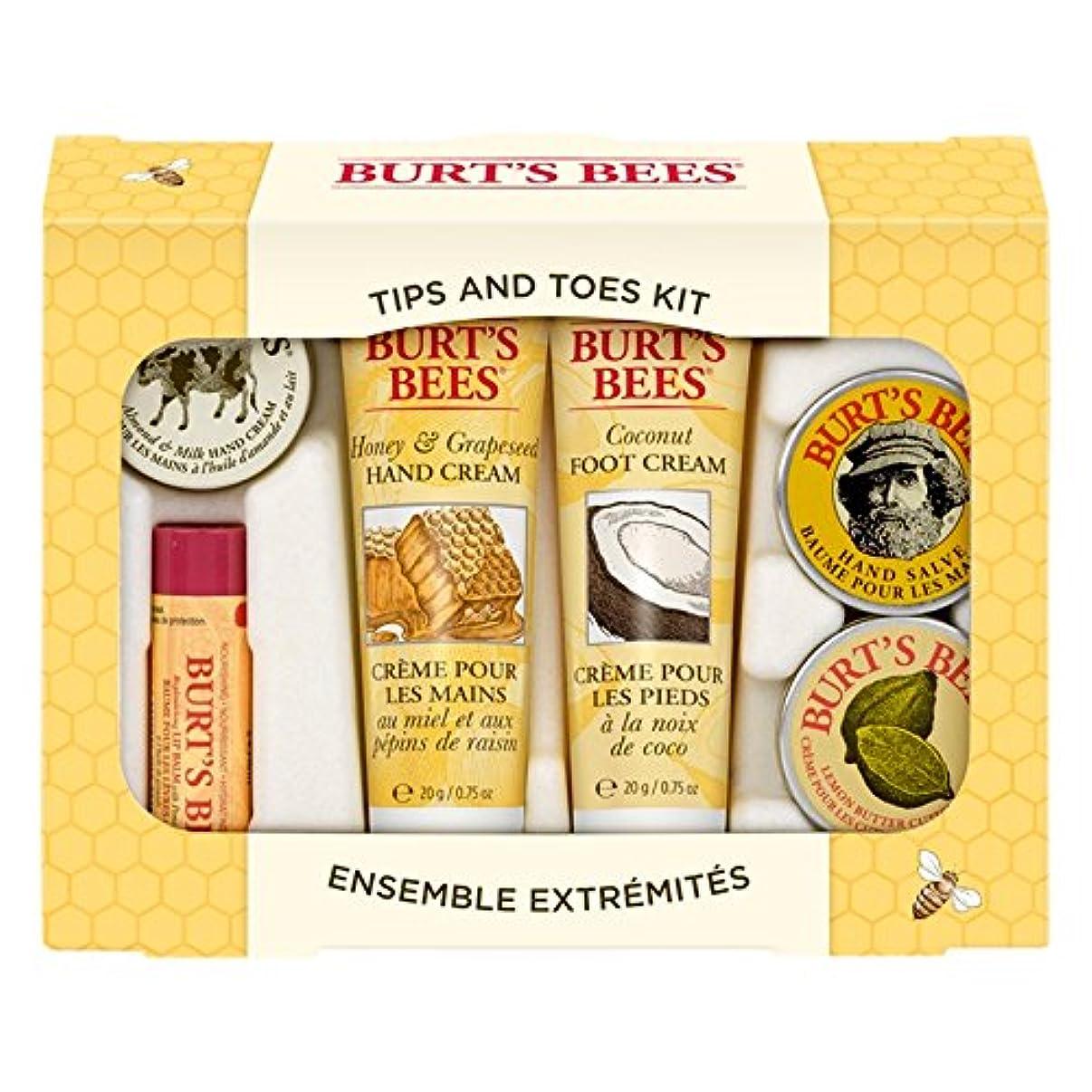 塩辛い魅力的曲線バーツビーのヒントとつま先はスターターキットをスキンケア (Burt's Bees) - Burt's Bees Tips And Toes Skincare Starter Kit [並行輸入品]