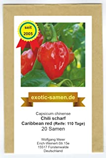 Eines der schärfsten Chilis - Habanero Caribbean red - 20 Samen