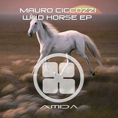 Mauro Ciccozzi