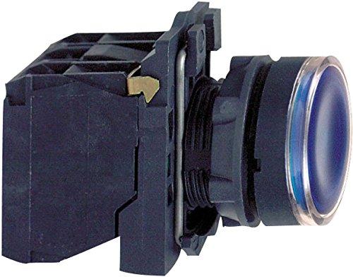 Schneider ELEC Pic MSS 41 03 – knop licht gegalvaniseerd diameter 22 110 – 120 V blauw scherm van kunststof