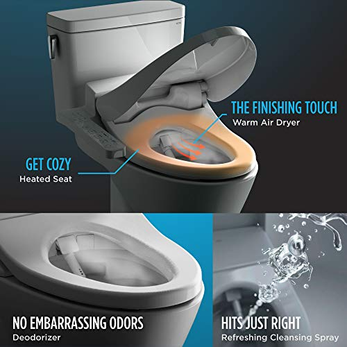 10 Best Toto Toilet Seat Of 2020 Recommended By Experts