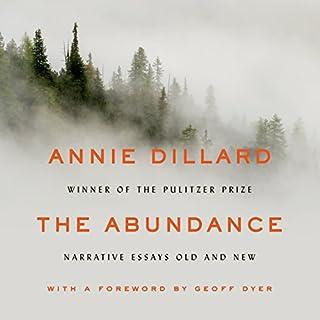 The Abundance cover art