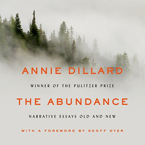 The Abundance audiobook cover art