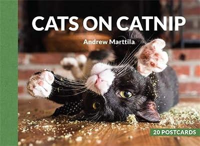 Cats on Catnip: 20 Postcards