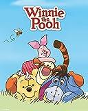 Winnie Puuh der Bär - Pooh- Characters Filmposter