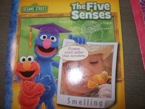 Meu primeiro livro sobre os cinco sentidos (mesmo rua)