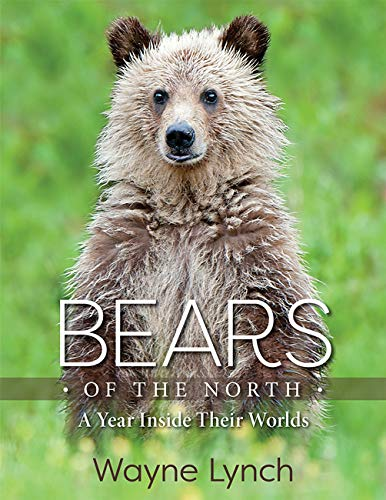 Bears of the North: A Year Inside Their Worlds (English Edition)