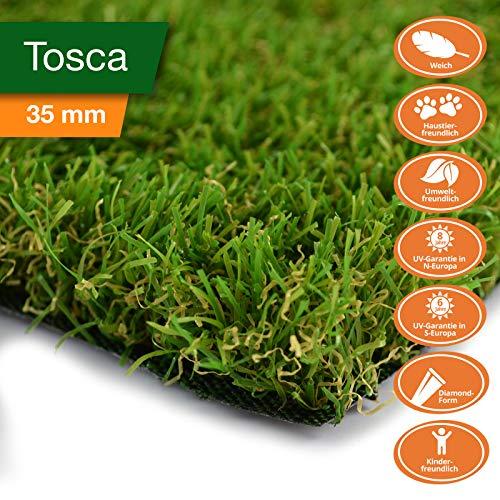 Premium Kunstrasen | Rasenteppich | Rollrasen | Kunststoffrasen | Garten-Rasen | Rasen für Balkon, Terrasse & Garten | viele Modelle | verschiedene Größen & Stärken (Tosca (Höhe: 35mm), 100x300 cm)