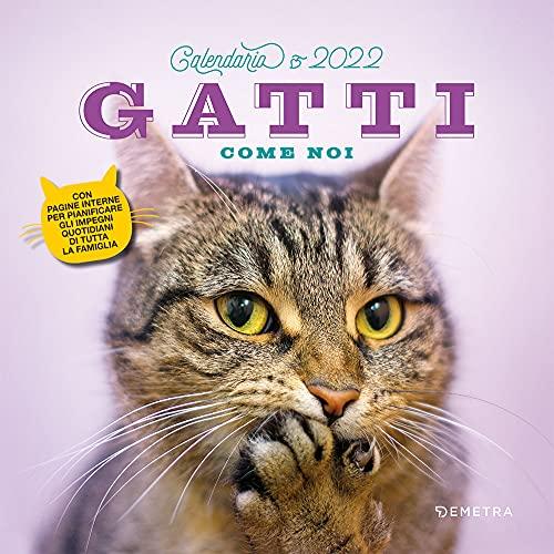 Gatti come noi. Calendario 2022