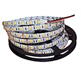 Tesfish 5m/rollo DC 24V 5050 Tira de LED de color Blanco cálido Impermeable IP65 300 LEDs Tira de LED de SMD 5050