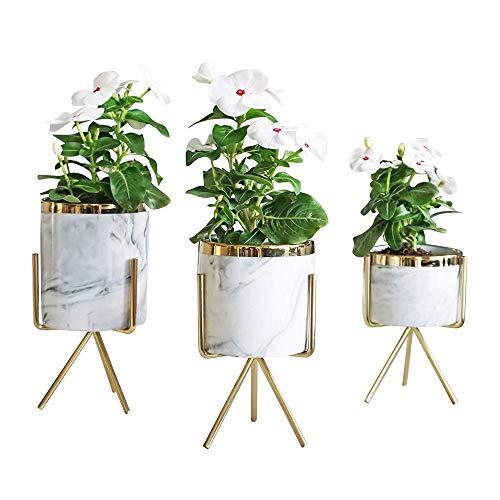 JCCOZ - URG - Botellas en jarrón, decoración de cerámica y flores artificiales, plantas suculentas, mármol, aspecto, apto para el hogar y la oficina, tres Loaded URG