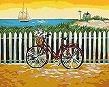 Pintar por Numeros Adultos Bicicleta de valla DIY Pintura al óleo Kit con Pinceles y Pinturas para Niños Decoraciones para el Hogar sin Marco de 40 X 50 cm