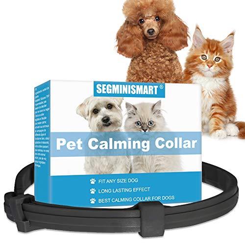 SEGMINISMART Collare Calmante, Collare Anti-ansia con Dimensioni Regolabili, Effetto Calmante Impermeabile Sicuro Naturale Duraturo Rilievo di Ansia per Cani e Gatti