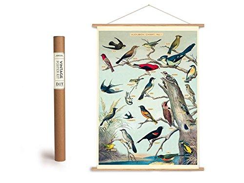 Vintage Poster Set mit Holzleisten (Rahmen) und Schnur zum Aufhängen, Motiv Vögel, Birds