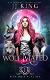 Wolf Mated (Beta Wolf Academy Book 1) (Kindle Edition)