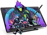 XP-PEN 22 Pro HD IPS Monitor de Dibujo con Soporte Ajustable Viene con el Último Software de Dibujo...