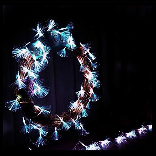 LED Luci Stringa Luci A Fibre Ottiche Armadietto Del Vino Camera Da Letto Decorazioni Per La Casa Luci Negozio Per Feste Decorazione Per Feste Di Compleanno Fata Luci 2M 10Led
