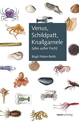 Venus, Schildpatt, Knallgarnele: (alles außer Fisch)