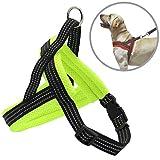 BPS Arnés Correa para Perros Mascotas Collar Ajustable 4 Tamaños Colores para Elegir para Perro Pequeño Mediano y Grande (M, Verde) BPS-3882V