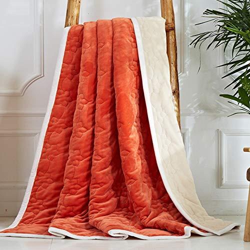 YJJSL Manta de Franela Simple Moderna Manta de Color sólido Coral Velvet Manta para Evitar el frío/Suave y cómodo (Color : C, Size : 200cmx230cm)