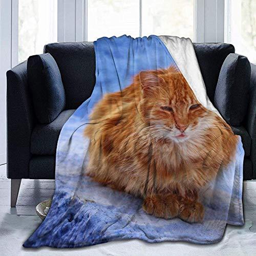 Manta de Tiro Orange Tabby Cat Rocks Manta de Microfibra Ultra Suave Manta de Cama súper Suave y acogedora para Cama Sofá Sofá Sala de Estar Picnic en