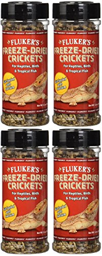 (4 Pack) Fluker's 1.2-Ounce Freeze Dried Crickets
