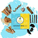 Hotspot Pets Box - All Natural Dog Chews and Treats Subscription Box for Small & Medium Dogs and Light Chewers