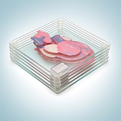 Product Image 2: Anatomic Heart Specimen Coasters (Set of 6 Pieces) – Brain Coaster Set Also Available