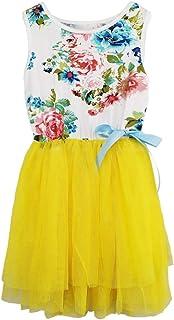 57e8b743a9 Niyage Little Girls Sleeveless Floral Princess Dress Tulle Tutu Sundress