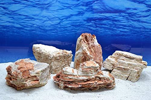 Pro Stein Aquarium Deko helle Pagode beige/braunes 4,8-5,2 Kg Naturstein Nr.45 Versteinertes Holz Laub Aquascaping