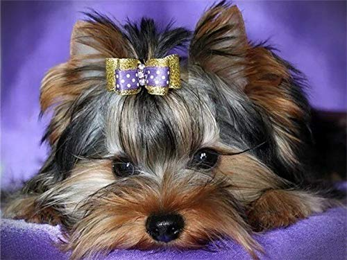 Pintura de diamante perro diamante bordado Animal completo mosaico de diamantes decoración del hogar pintura A8 40x50cm