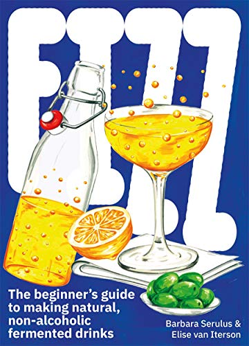 FIZZ: A Beginners Guide to Making Natural, Non-Alcoholic Fermented Drinks