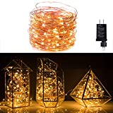 Minetom Fairy Lights Plug in, 100Ft 300LED Waterproof Firefly Lights on Copper Wire - UL Adaptor Included, Starry String Lights for Wedding Indoor Outdoor Christmas Patio Garden Decoration, Warm White