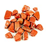 Cherry Tree Collection 1/2 Pound Tumbled Polished Stones | 3/4' - 1' Size Nuggets | Crystals for Decoration, Healing, Reiki, Chakra (Red Jasper)